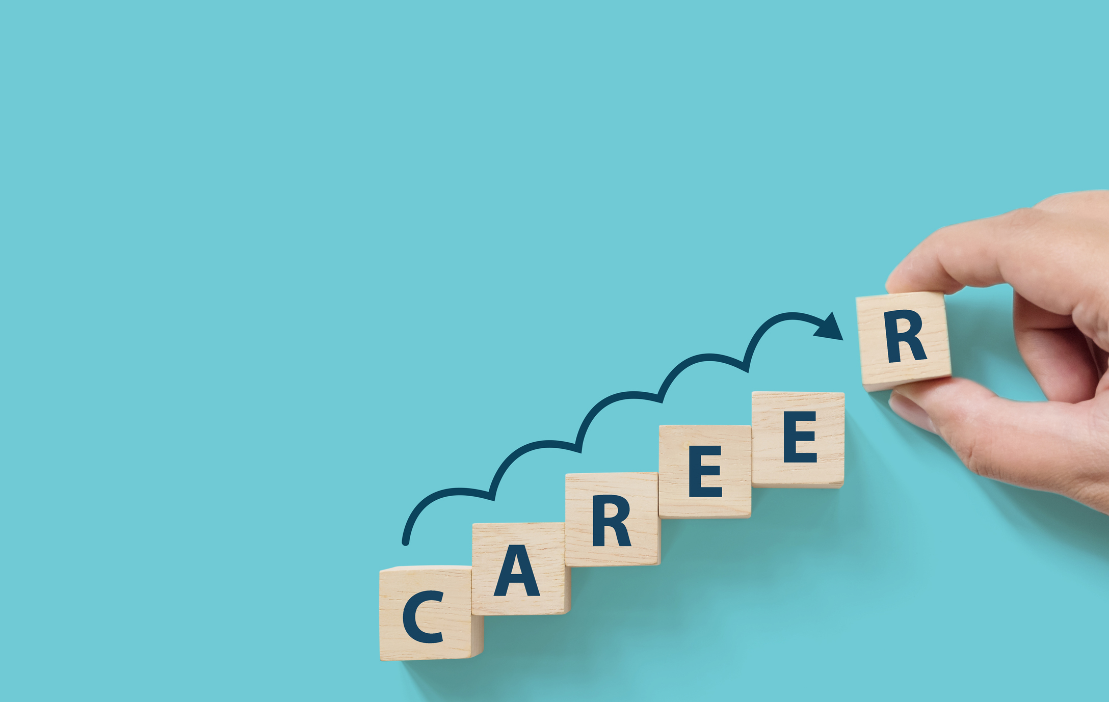 Things to know about the term career before choosing the one